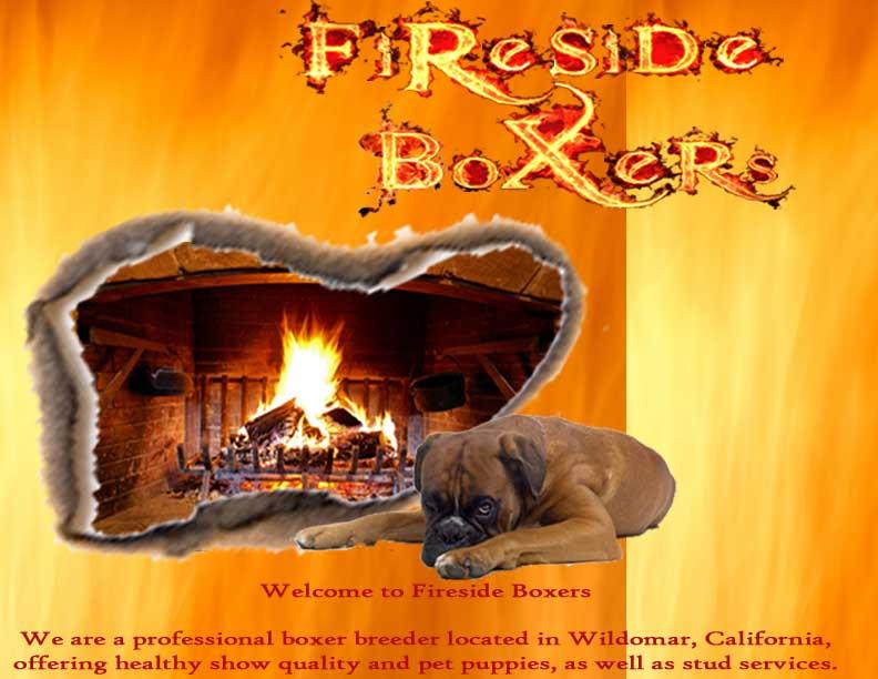 Fireside Boxers-Riverside, California Boxer Breeder offering boxer